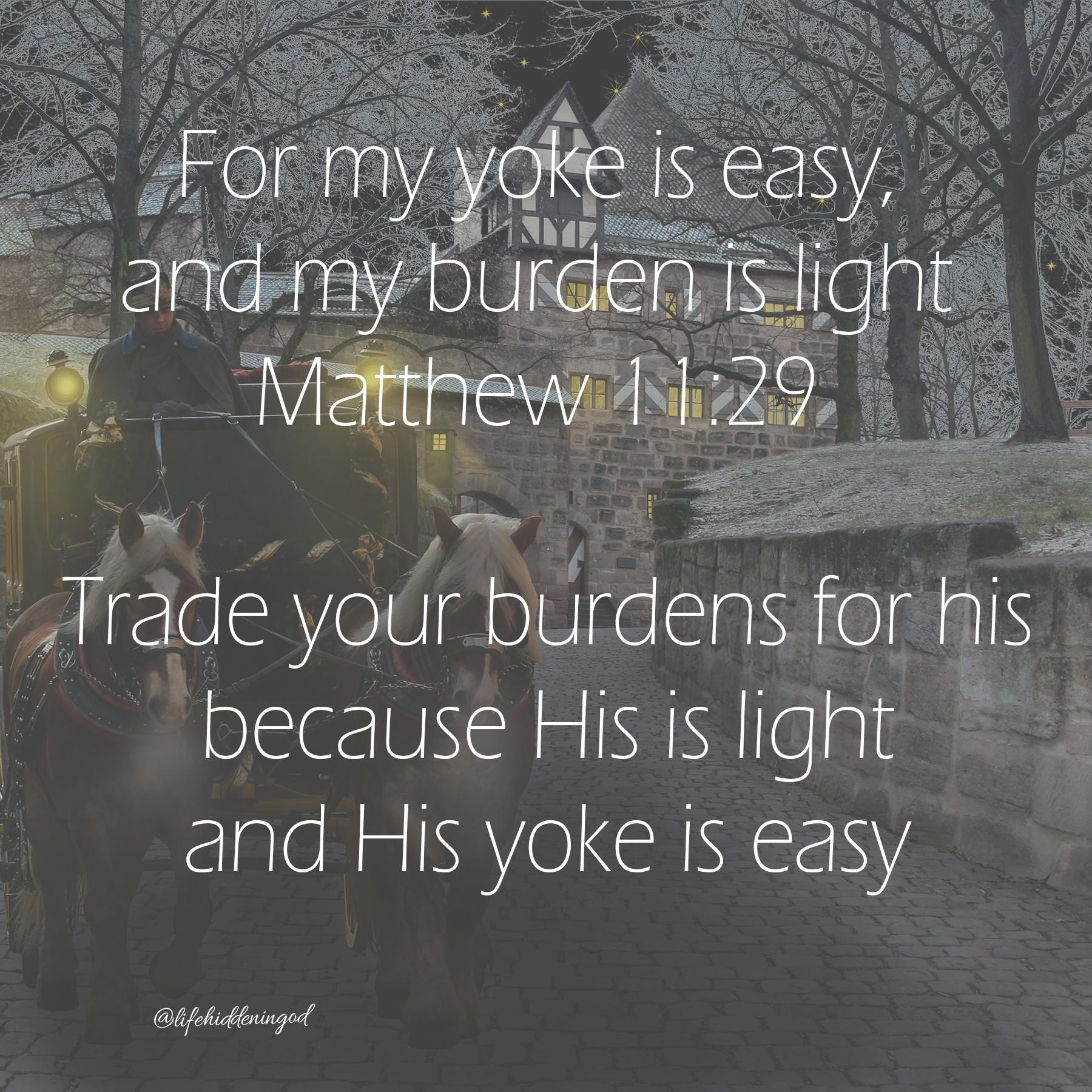 Easy Yoke Light Burden