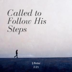 1 Peter 2:21